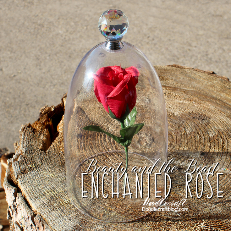 Beauty And The Beast Enchanted Rose In Cloche Diy