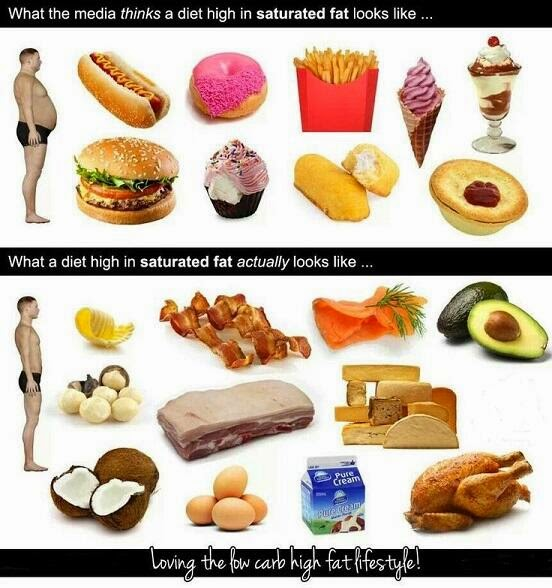 Foods That Are Low In Carbs And High In Fat