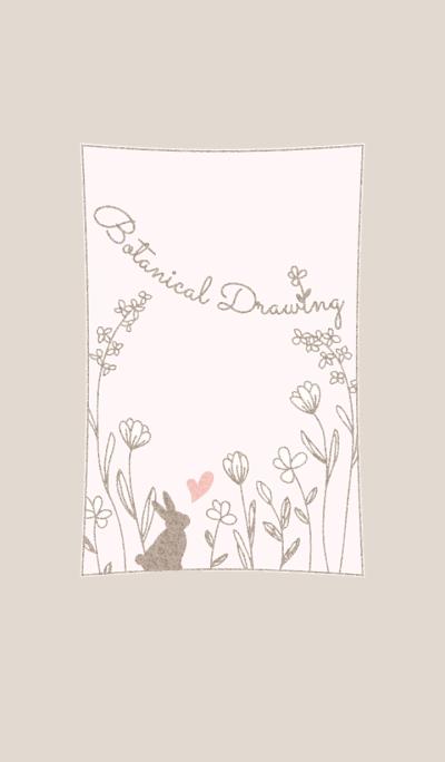 Botanical Drawing/Brown 13