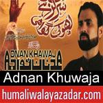 https://www.humaliwalyazadar.com/2018/09/adnan-khuwaja-nohay-2019.html
