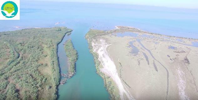 ΗΓΟΥΜΕΝΙΤΣΑ-Εντυπωσιακά πλάνα από τις προστατευόμενες περιοχές στο Δέλτα Καλαμά