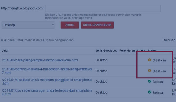 Perhatian Blog Dengan https Harus Submit Ulang di Search Console
