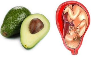 Avocado and Pear is linked with Womb and Cervix of female