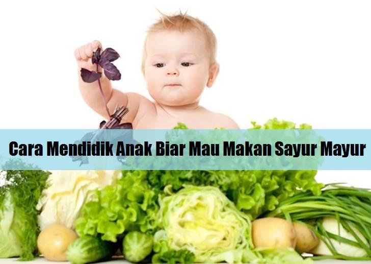 Tips Jitu Cara Mengajak Dan Mendidik Anak Agar Mau Makan Sayur Mayur