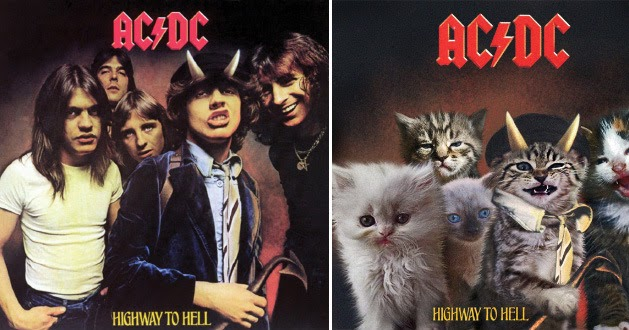 The Kitten Covers: 19 Classic Album Covers Recreated With Cats
