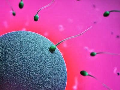 Nguyên nhân tinh trùng ít và cách khắc phục