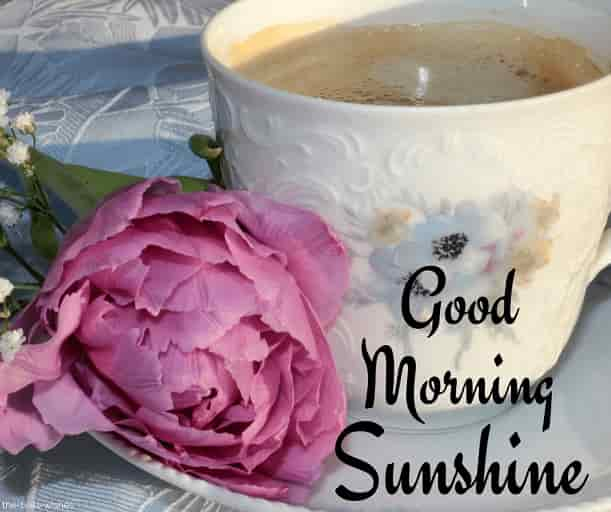 good morning sunshine with coffee and pink flower