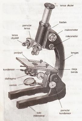 Cara menggunakan mikroskop dan bagian-bagian mikrskop beserta fungsi-fungsinya
