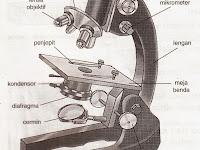 Cara Menggunakan Mikroskop Yang Benar serta Bagian-bagiannya