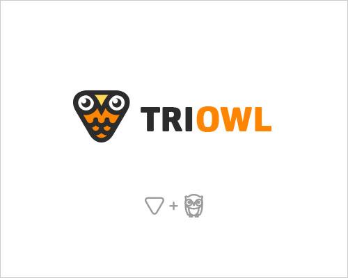 Logo Example - Triowl
