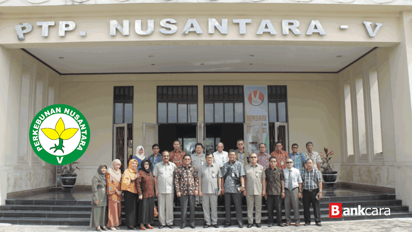 Rekrutmen Lowongan Kerja PT Perkebunan Nusantara V (Persero)