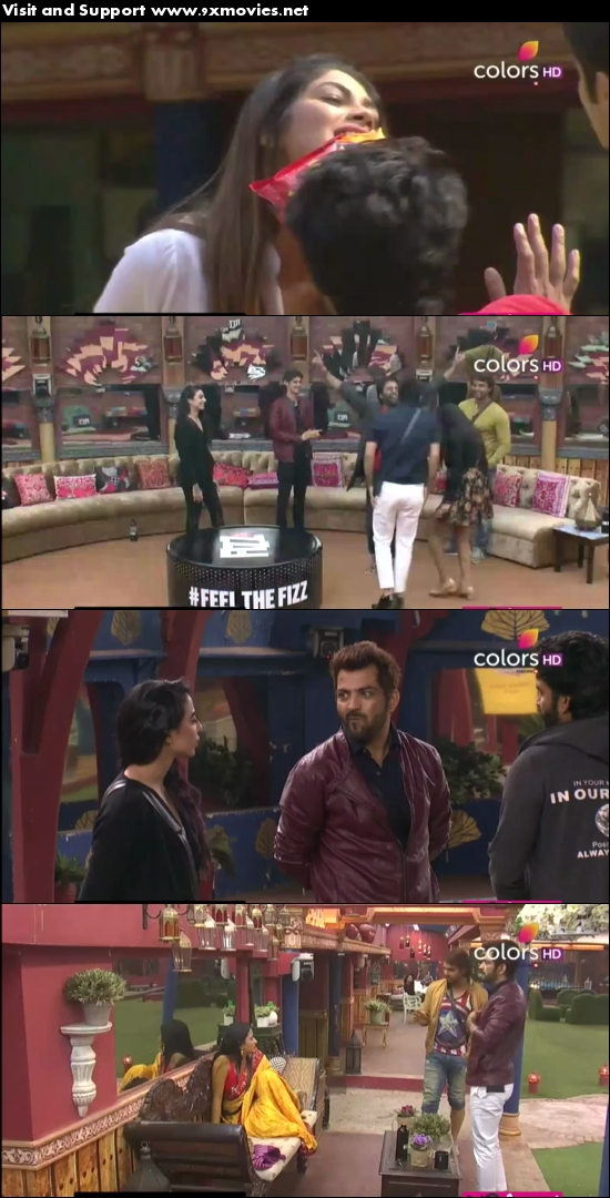 Bigg Boss S10E93 17 Jan 2017 HDTV 480p