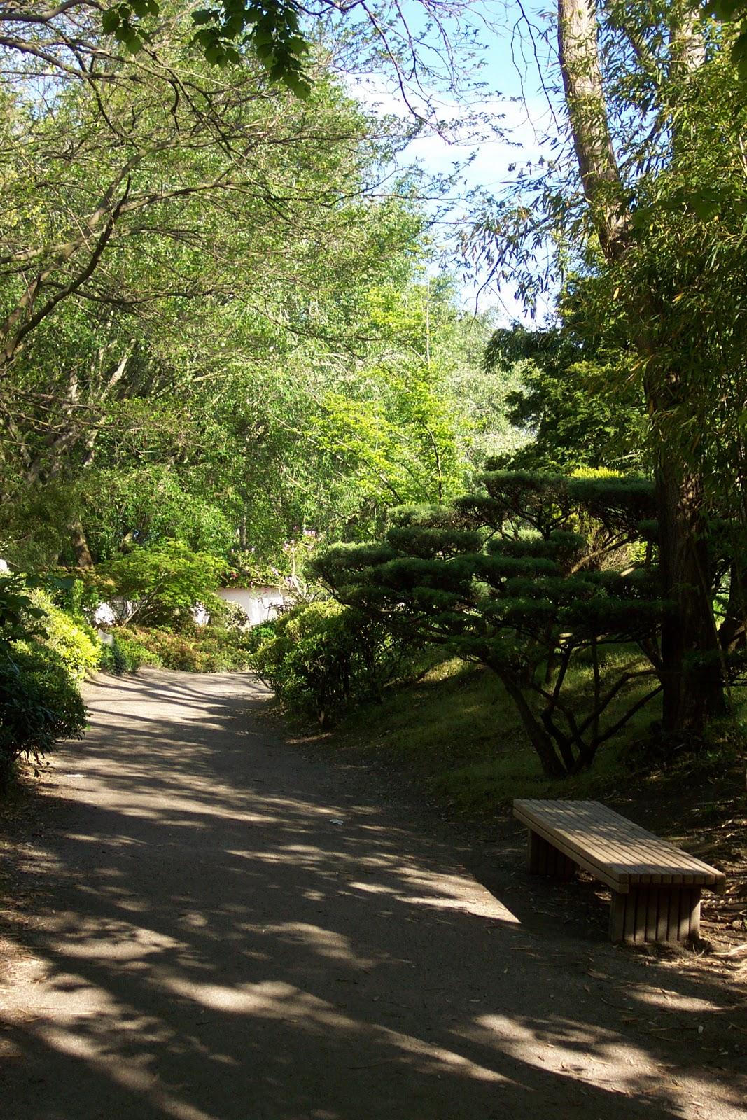 Le Blog De Jean-Marc: Jardin Japonais Toulouse