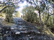 Catatan Perjalanan Ke Gunung Siguniang, Puncak Da Feng (Hari Kelima)