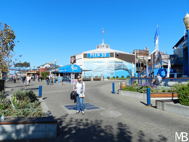 pier 39 san francisco california