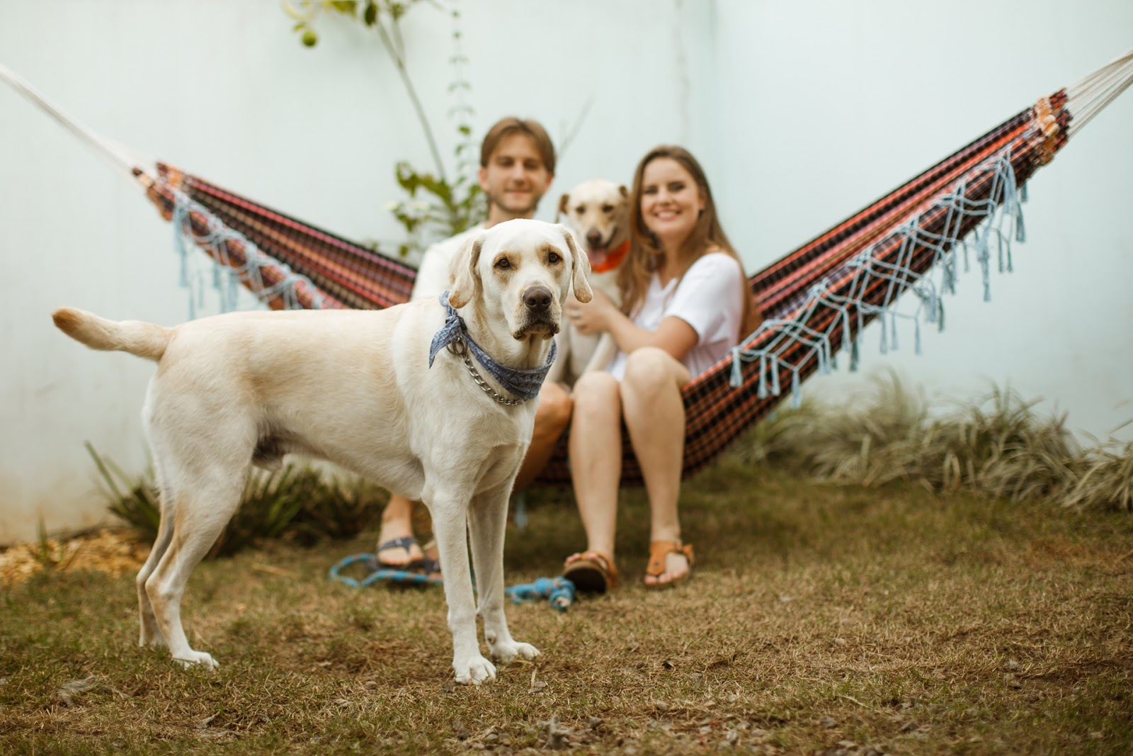 Fotografia de Casamentos Joinville