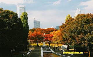 Yoyogi Garden