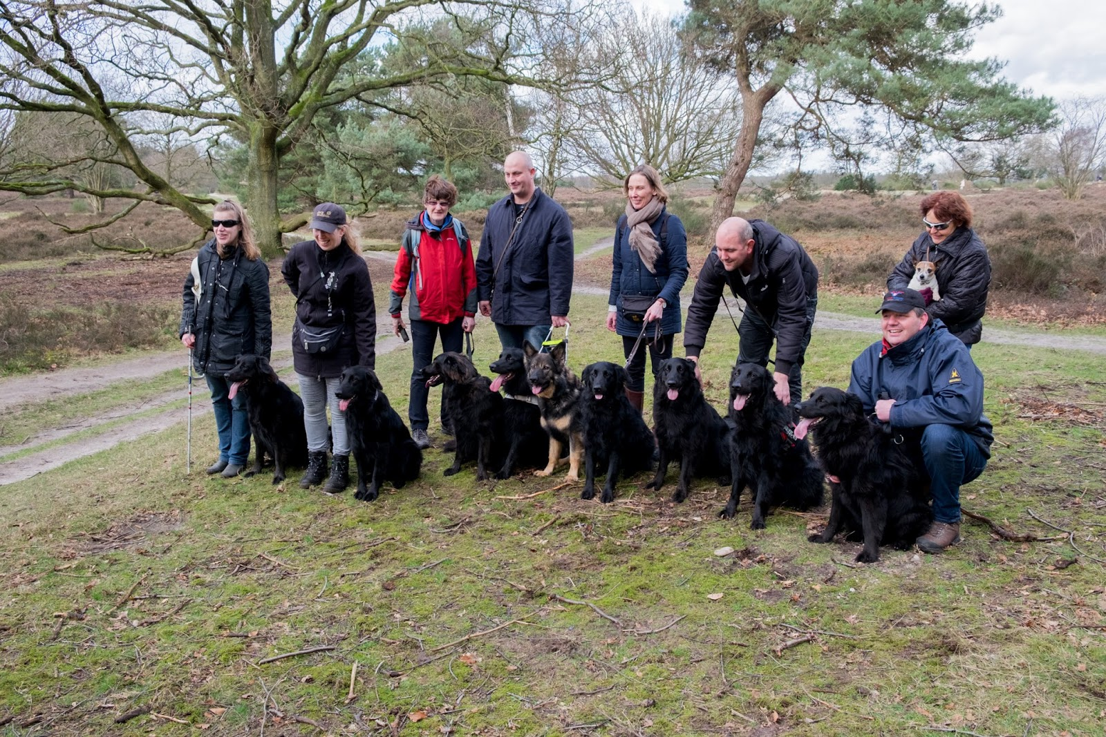 Groepsfoto met honden en bazen