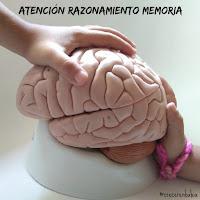 http://crecerenbabia.blogspot.com.es/search/label/atenci%C3%B3n