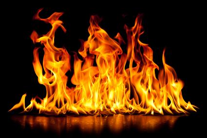 pitta ogień