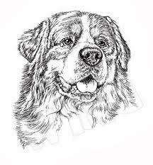 Disegni da colorare di cani for Cani da colorare e da stampare