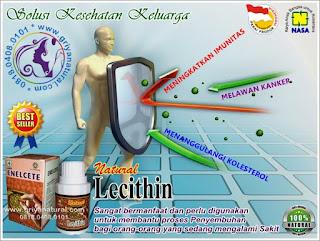 daya tahan, antibodi, kekebalan tubuh, sistem imun, vitamin alami, pertahanan tubuh, imun tubuh, penyakit imun, imunitas tubuh, ketahanan tubuh,