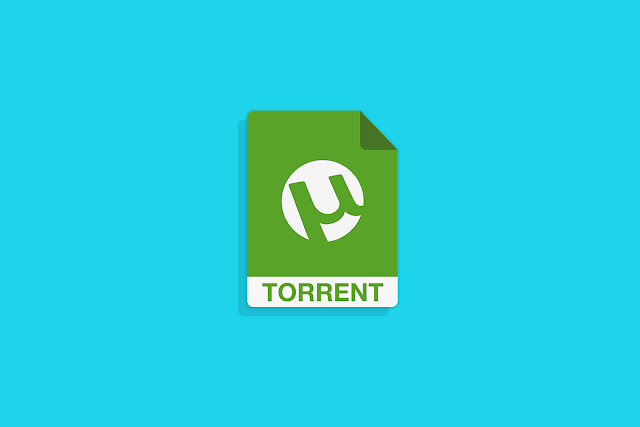 7 Pro Tips to Safely Download Torrents and Protect Your Identity