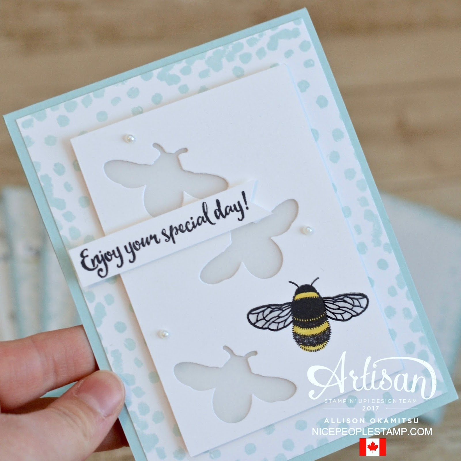 nice people STAMP! - Stampin\' Up! Canada: Dragonfly Dreams Card ...