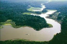 معلومات عن حوض نهر الأمازون 4