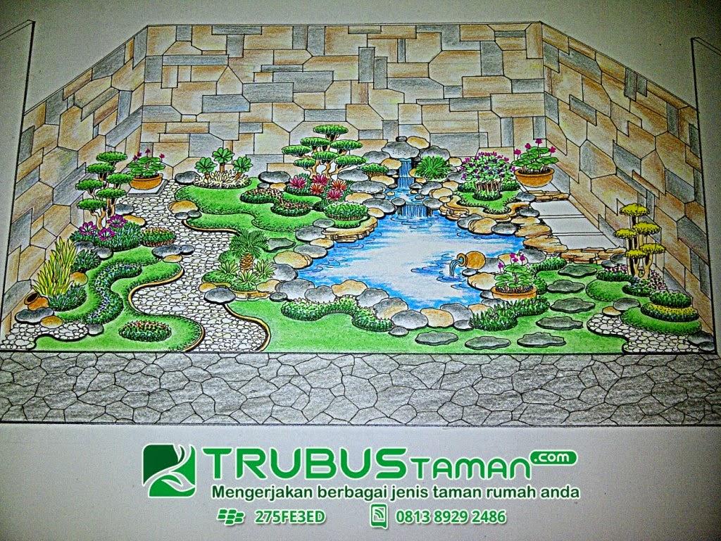 Biji Rumput Bermuda Grass Taman Lapangan Berkualitas Tukang Tanaman Hias Murah Kolam Minimalis