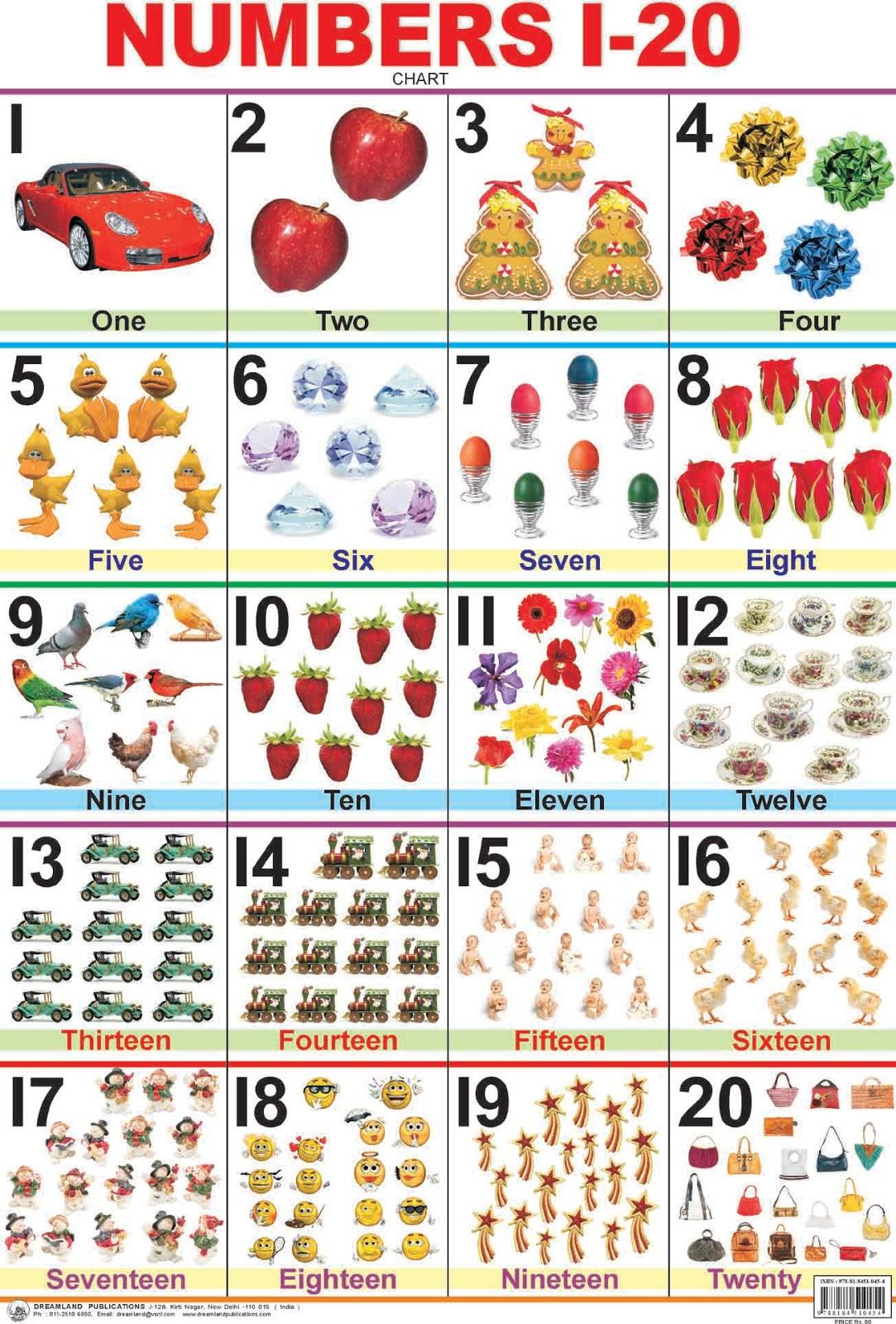 Okul Dersleri 5 Ders Numbers 1 20 Say Lar 1 20