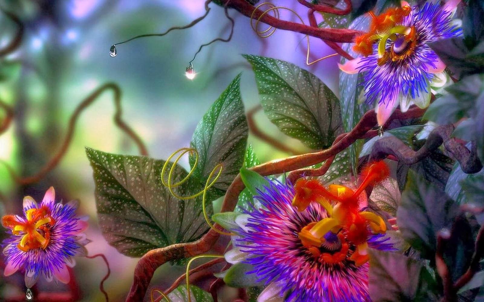Heena 3d Wallpaper Walpepar Wallpepar 52 Pak 13 Beautiful Flower