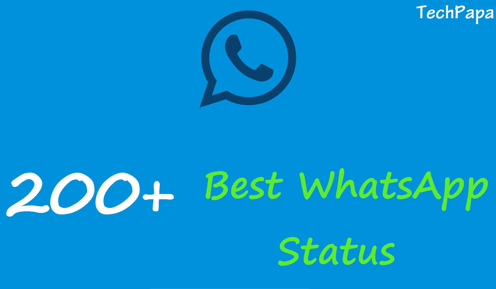 Locubs 200 Best Whatsapp Status