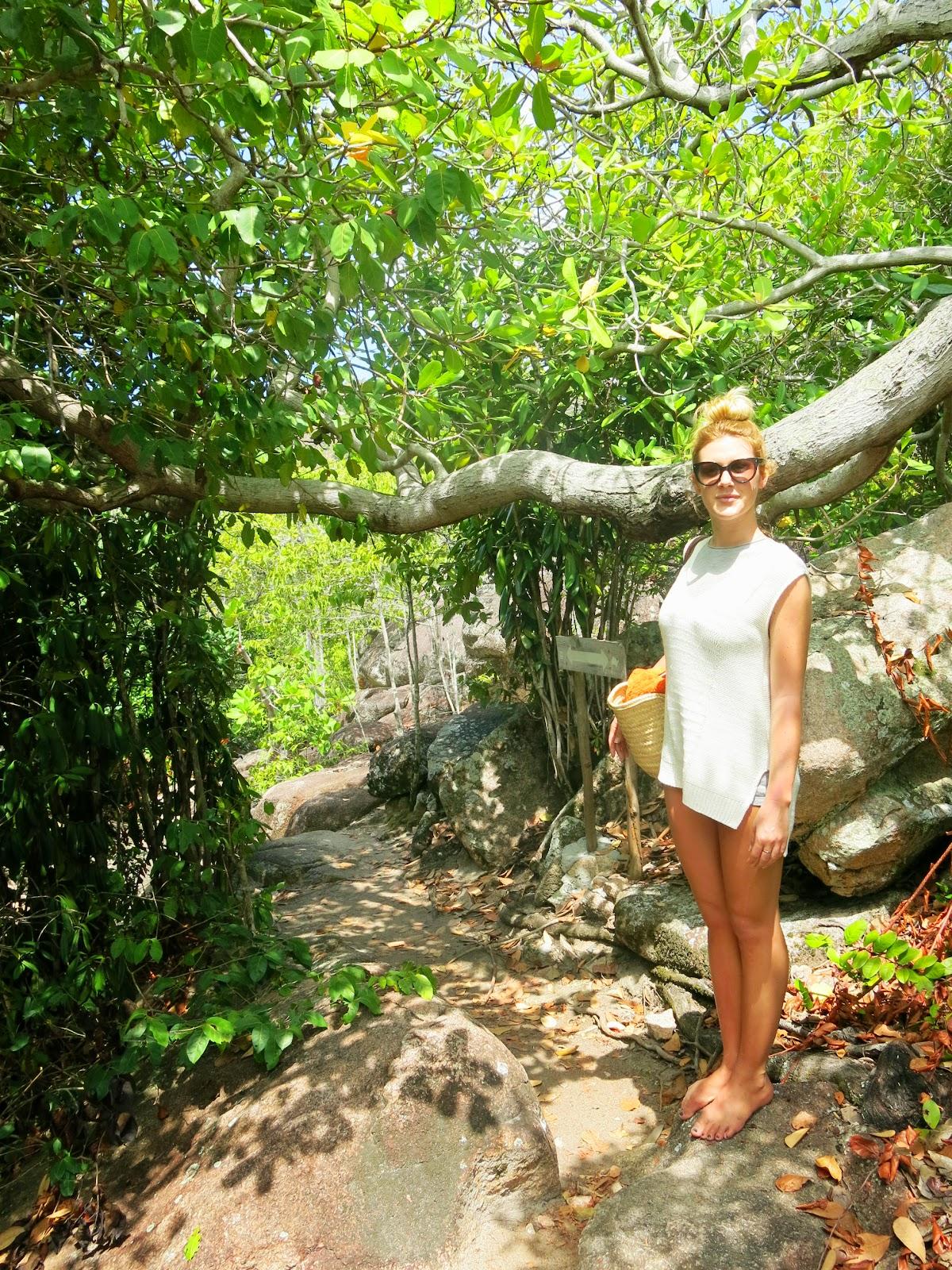 Curieuse Island på Seychellerna