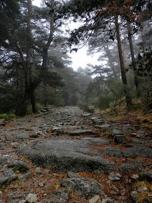 Calzada romana del valle de la Fuenfría en Cercedilla. Madrid