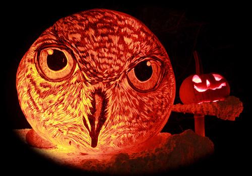 My Owl Barn Jack O Lantern Spectacular