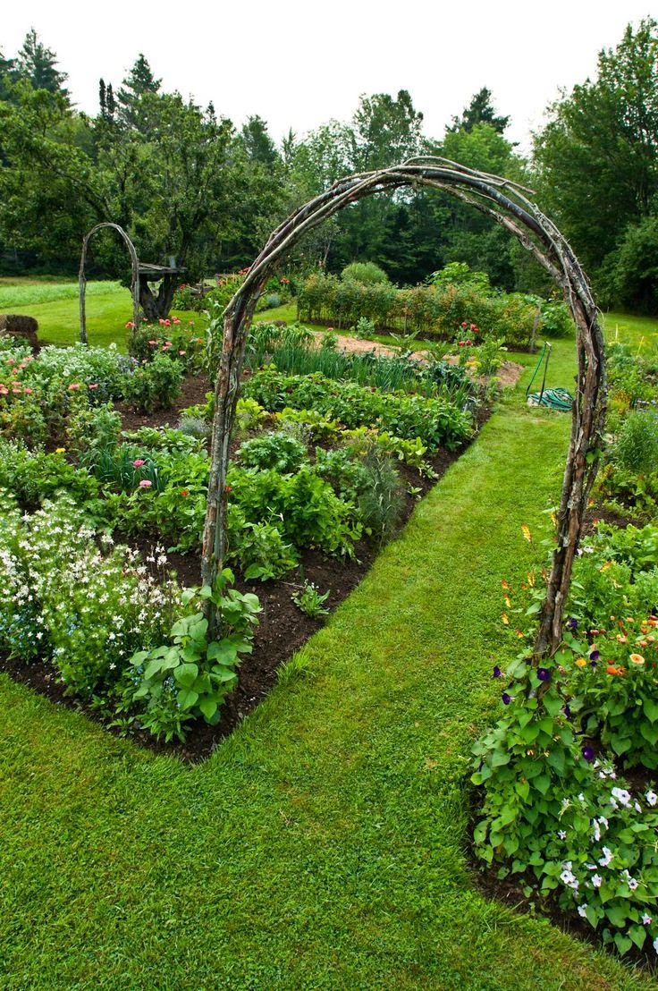All Stuff: Fantastic Garden Ideas And Tips And DIY
