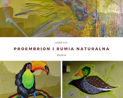 Graffiti Rumia Naturalna - Proembrion