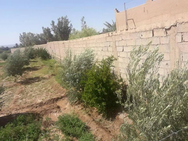 Jardins de Skoura pour construire une auberge