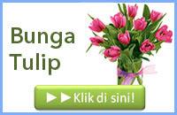 http://www.bunga24.com/p/jual-bunga-tulip-impor.html