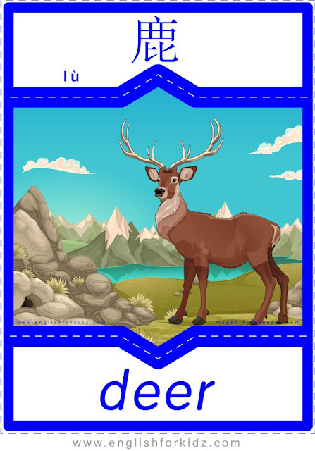 Deer - English-Chinese flashcards for wild animals topic