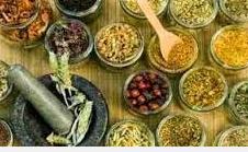 Obat Tradisional Penyubur Kandungan Agar Cepat Hamil