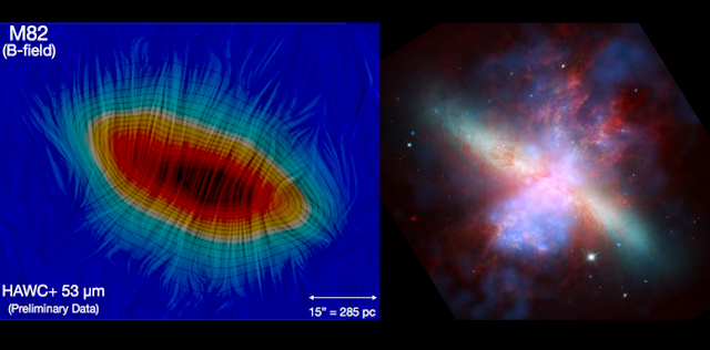 The left image shows the large-scale magnetic field along the polar direction of the disk of the starburst galaxy M82. The HAWC+ imaging polarimetric observations show, for the first time, a relatively hot dust magnetically aligned along the direction of the outflows. The right image shows a multi-wavelength view of the galaxy, with the blue x-ray revealing gas that has been heated by the violent outflow. Credits: Left: SOFIA/HAWC+/E. Lopez-Rodriguez Right: X-ray: NASA/CXC/JHU/D.Strickland; Optical: NASA/ESA/STScI/AURA/The Hubble Heritage Team; IR: NASA/JPL-Caltech/Univ. of AZ/C. Engelbracht
