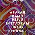 Apakah Kamu Perlu Instagram Untuk Blog Kamu?