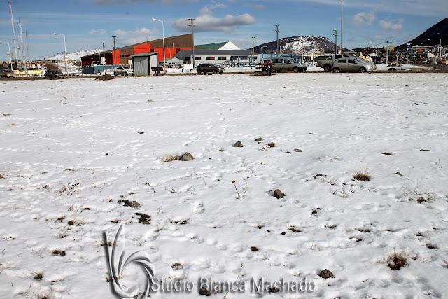fotos profissionais de  Ushuaia Argentina