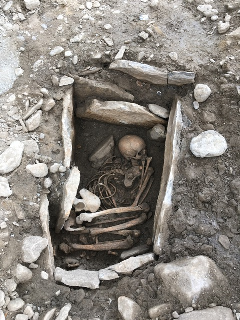 30 medieval mass graves uncovered in the Czech Republic