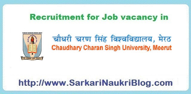 CCS University Meerut naukri vacancy recruitment