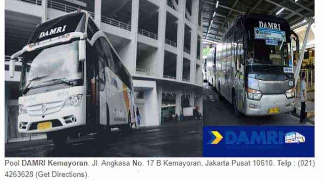 Nomor Telepon Damri Kemayoran & Call Center Damri
