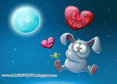 I Love You New 2013 Wallpapers 1:wallpapers screensavers