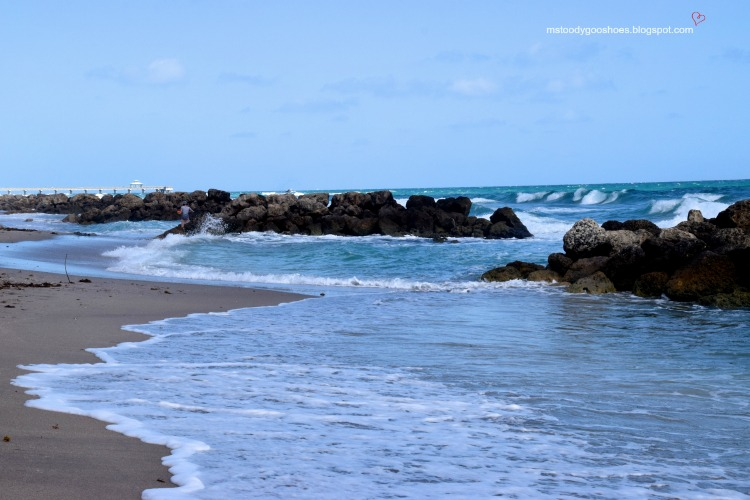 Deerfield Beach:  A Month In Florida  Ms. Toody Goo Shoes